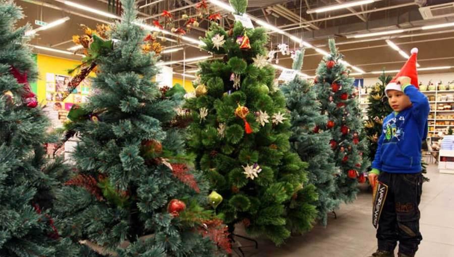 Советы по выбору новогодней ёлки