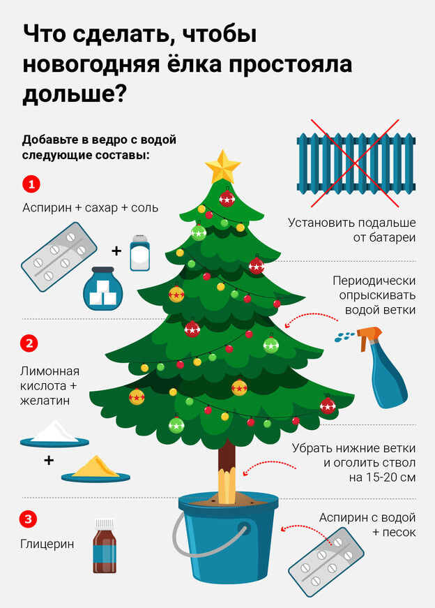 Что делать, чтобы елка простояла дольше